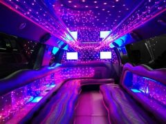 Party bus hire, party bus cape town, party bus, party bus rental, party bus prices