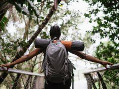 Does Traveling Make Us More Creative | Sudesh Rocharam